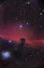 Horse_03_WEB_2.png